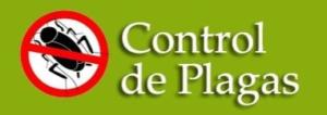 Servicios de control de plagas en Getafe