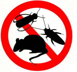 Servicios de control de plagas en Parla
